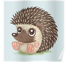 Round hedgehog Poster