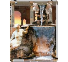 Historic Ornamental Fountain Display iPad Case/Skin