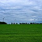 Windbines by RavenRidgePhoto
