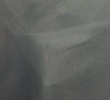 Agapita Behind Curtain #1 by Jason Lee Jodoin