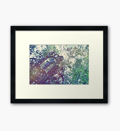 Haunted Angel  Framed Print