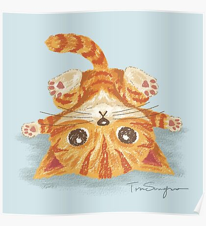 Tabby upside-down Poster