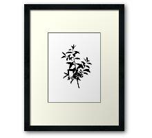 Dahoon Holly Brush Framed Print