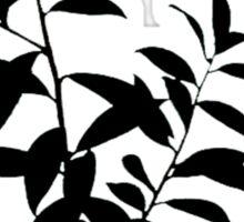 Dahoon Holly Brush Sticker