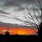 Sunrise..Mt Magnet WA by robert murray