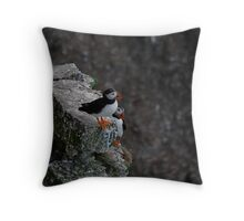 Bempton Cliffs 12 Throw Pillow