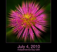 A Little Fireworks by Richard G Witham