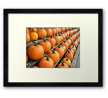 Fresh Produce - Pumpkins Framed Print