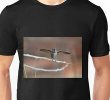 About to Take Off Unisex T-Shirt