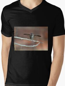 About to Take Off Mens V-Neck T-Shirt