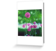 Garlic Chives Greeting Card