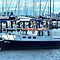 *Feature Page/Cabin Cruiser Moored - Everyday Life*