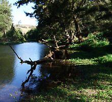 Beautiful Turon River at Sofala by sofalansw