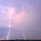 Lightning l by Sara Johnson