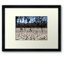 Frost - Dangars Lagoon, Northern Tablelands, NSW, Australia Framed Print