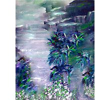 the tropical storm Photographic Print