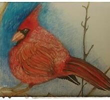 the cardinal by Nora Fraser
