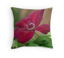 Clematis Throw Pillow