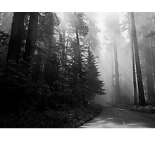 The Road to the Giants Photographic Print