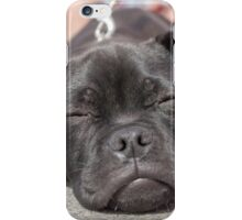 The tired puppy iPhone Case/Skin