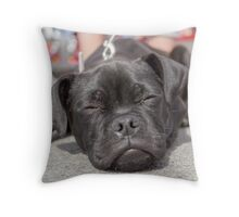 The tired puppy Throw Pillow
