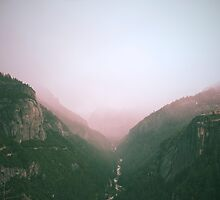 Fog in the Yosemite Park by vvinicius