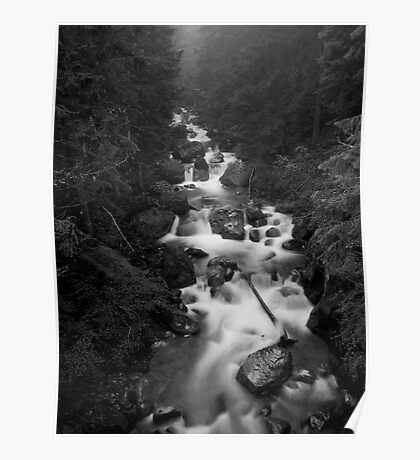 Mount Rainier National Park - Water in BW Poster