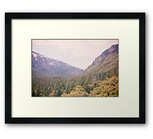 Yosemite forest Framed Print