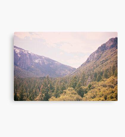 Yosemite forest Canvas Print