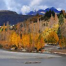 The Shotover River by Peter Hammer