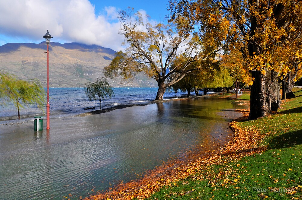 Lake Wakatipu by Peter Hammer