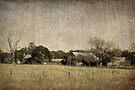Rural Australia - vintage by Rosalie Dale