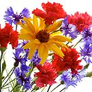 summer flowers: heliopsis, blue cornfolwers and pink carnations by Anastasiya Smirnova