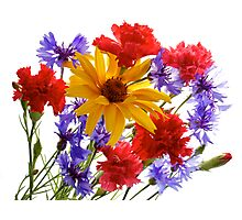 summer flowers: heliopsis, blue cornfolwers and pink carnations Photographic Print
