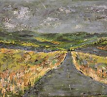 Thunderbolts Way - Northern Tablelands NSW by Kathie Nichols