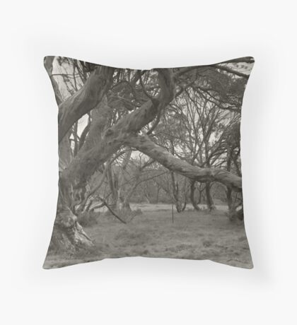 Snowgum Throw Pillow