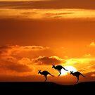 Australia by John Dalkin
