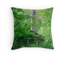 Down in the Woods.. Throw Pillow