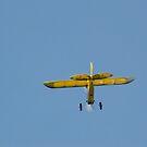 Yellow Electric Model Plane by mltrue