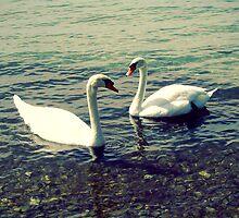 Love by Natasha D