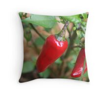 Chilly Throw Pillow