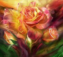 Birth Of A Rose - SQ by Carol  Cavalaris