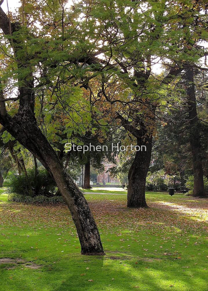 Inner City Parkland by Stephen Horton