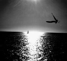 darker sunset by shannonybaloney