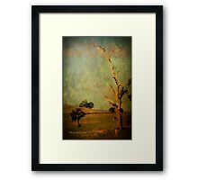 The dead tree ... Framed Print