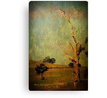 The dead tree ... Canvas Print