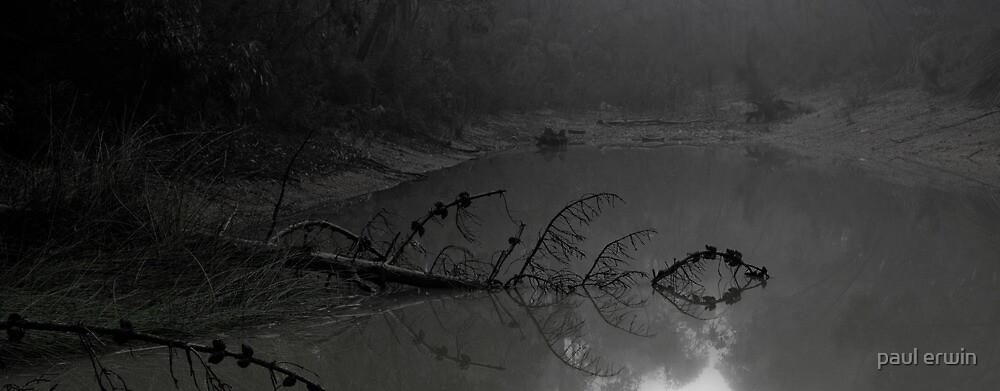 in the mist by paul erwin