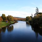 River  Deloraine by Carol  Lewsley