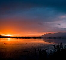 Golden Evening - Dal Lake ,Srinagar Kashmir by indianbsakthi