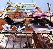 Washing lines  by Isabel  Rosero
